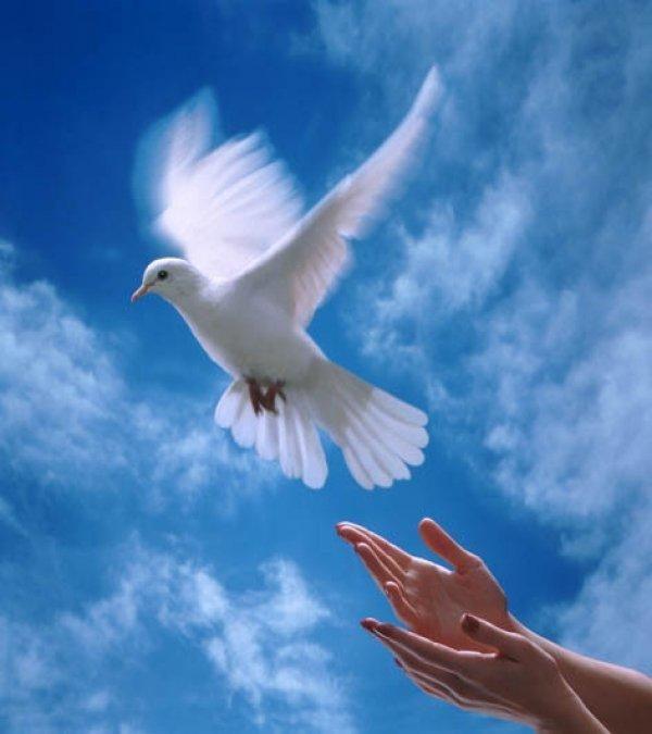 30 января 2014г. День открытых дверей!!! бесплатное мероприятие