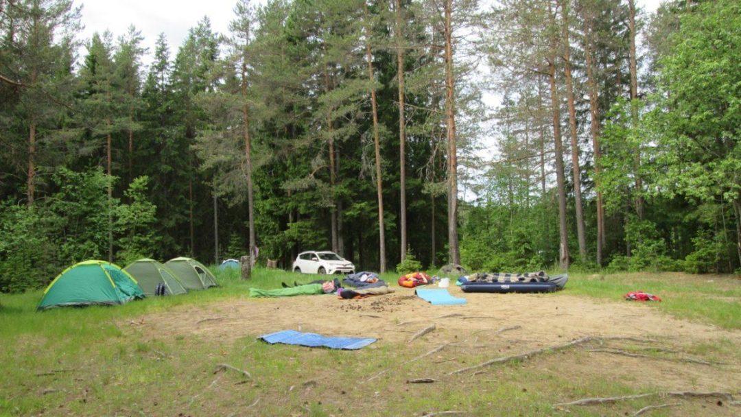 21-22 июля Выезд в лес Зарядись энергией леса.