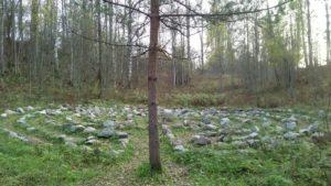 """7-9 августа """"Холотропный уикенд: Энергия леса"""""""